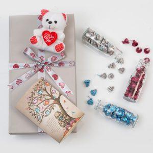Hershey's Chocolates in Jars With Teddy | Hamper World