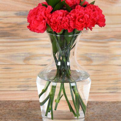 Gorgeous Cerise Carnations in Vase | Hamper World Florist