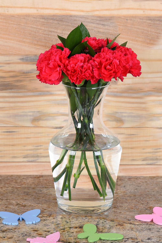 Vase The World.Cerise Carnations In Vase