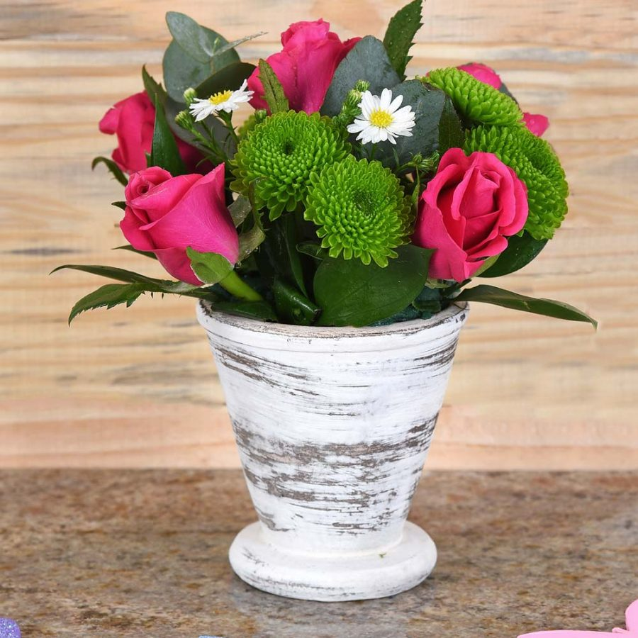 Cerise Roses in Ceramic Pot | Hamper World Florist