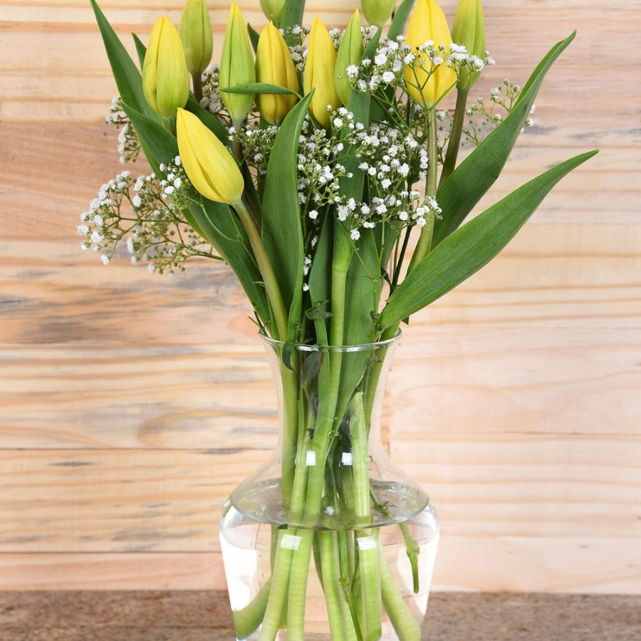 Beautiful Yellow Tulips in Vase   Hamper World Florist