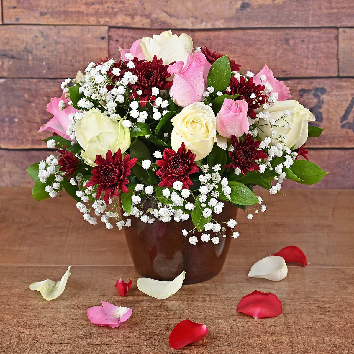 12 Pink & White Roses in Pot Florist | Hamper World