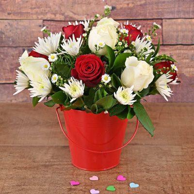 25 Red & White Roses in Bucket Florist | Hamper World25 Red & White Roses in Bucket Florist | Hamper World