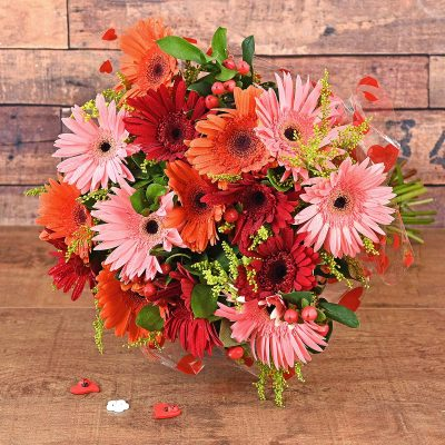 Mixed Gerbera Bouquet Florist | Hamper World